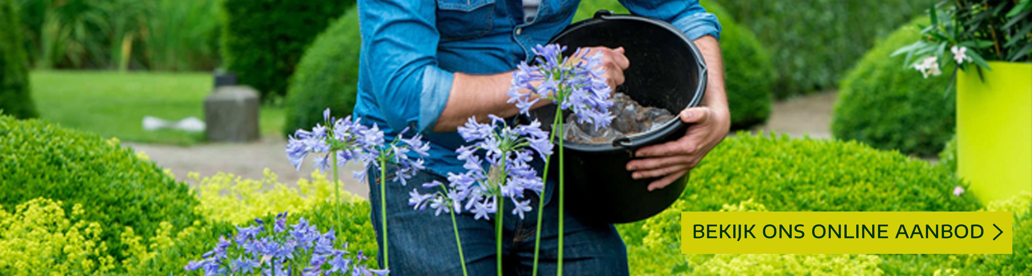 Artikelaanbod gazon bescherming en onderhoud leuven mechelen heist-op-den-berg tuincentrum thiels