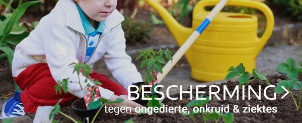 Bescherming tegen onkruid, ziektes & ongedierte in moestuin webshop tuincentrum thiels