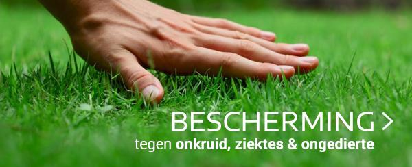 Bescherming gazon tegen onkruid, ongedierte en ziektes tuincentrum thiels online webshop