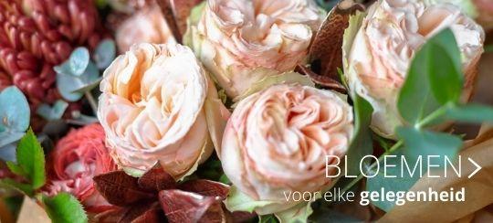 Bloemen webshop - Thiels