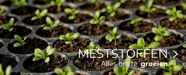 meststoffen moestuin webshop tuincentrum thiels