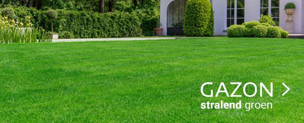 gazon groen webshop