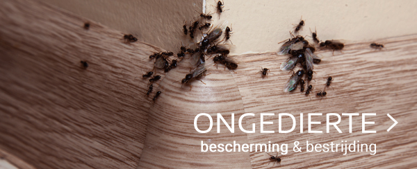 Ongedierte tuincentrum thiels webshop