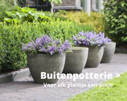 Buitenpotterie - Thiels